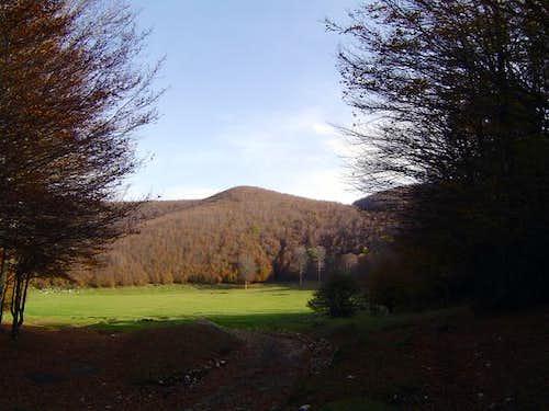 Mountain Terminio has ample...