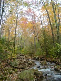 Little Stony Creek in Autumn