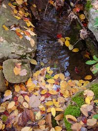 Little Stream in Autumn
