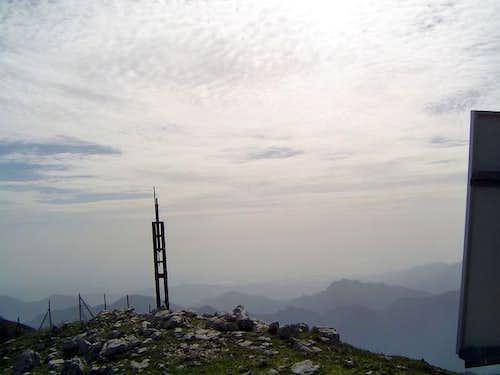 The summit of M. Terminio