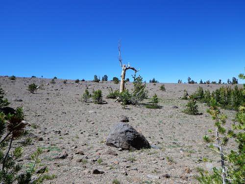 Gentle Terrain between Wells Peak and Lost Cannon Peak