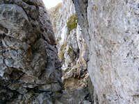 Descent from Bovški Gamsovec...