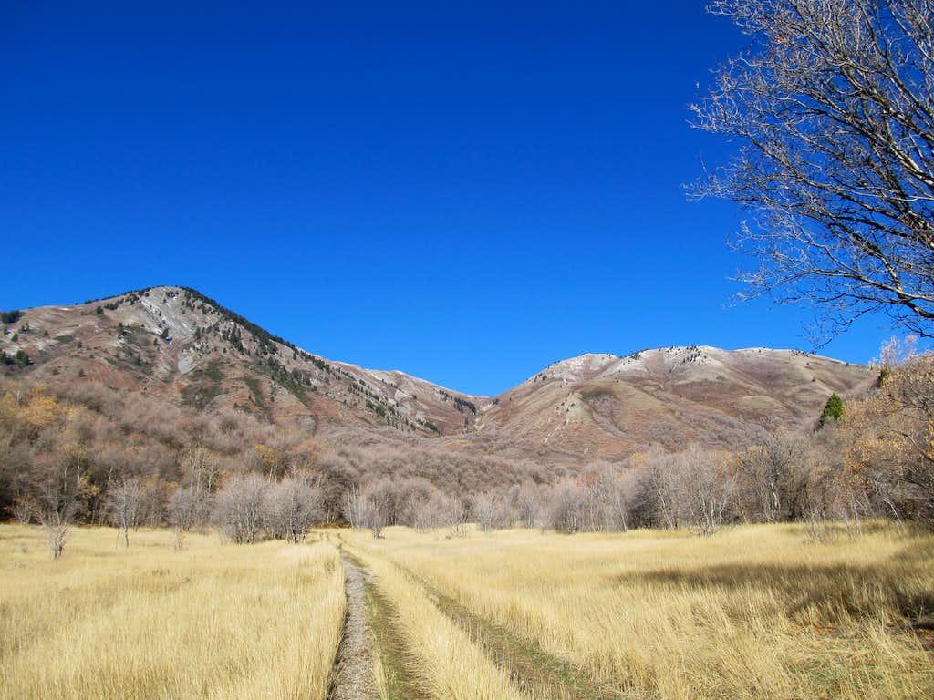 Getting started towards Rattlesnake Trail