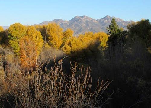 Pinnacles afar, autumnal cottonwoods near