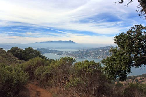 Mt. Tam from Mt. Livermore