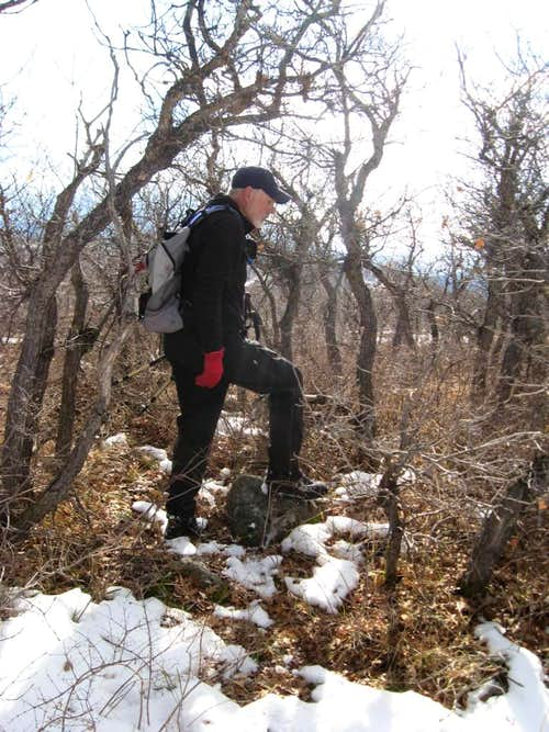 Dad on the summit