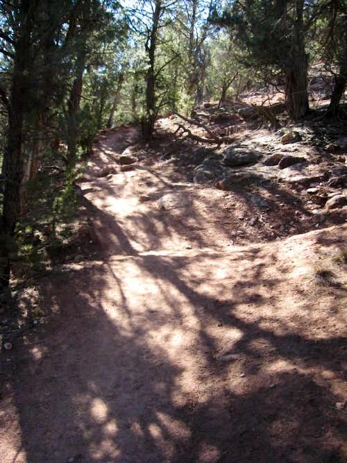 Beginning trail surface