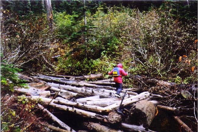 Serge is crossing the log jam...