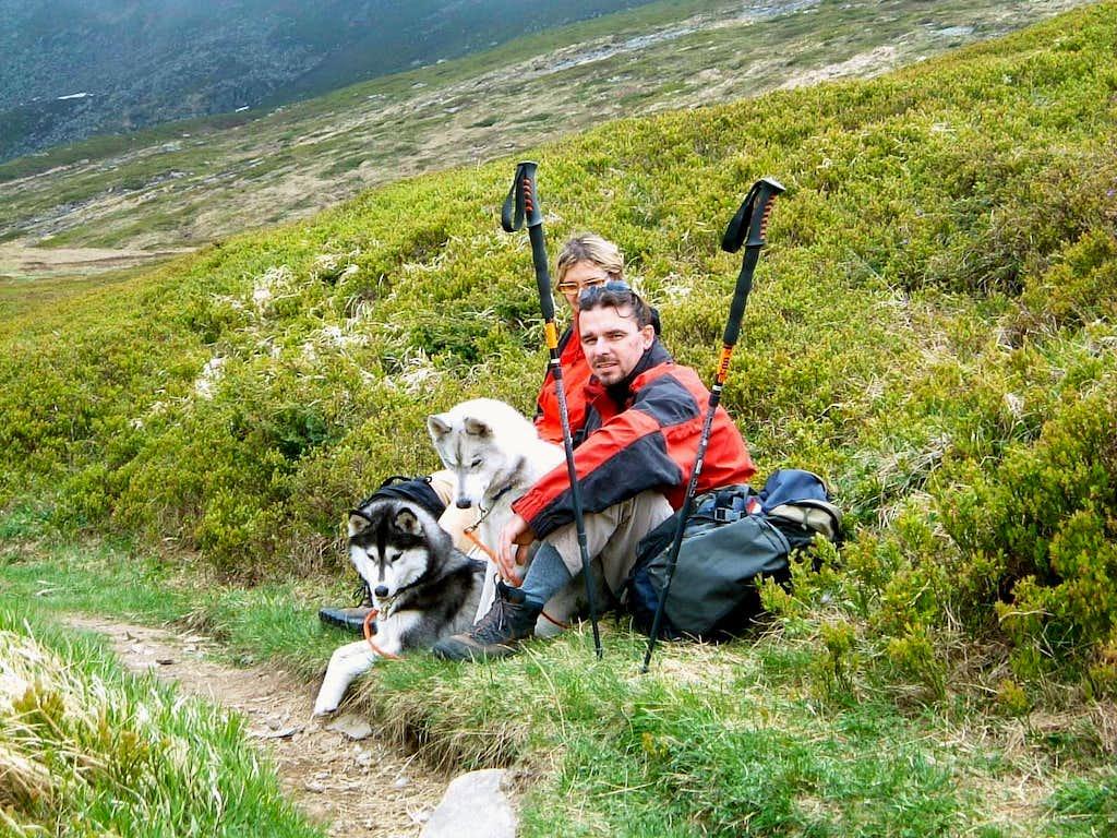 Parmesan Apennines - Dog trekking in middle spring