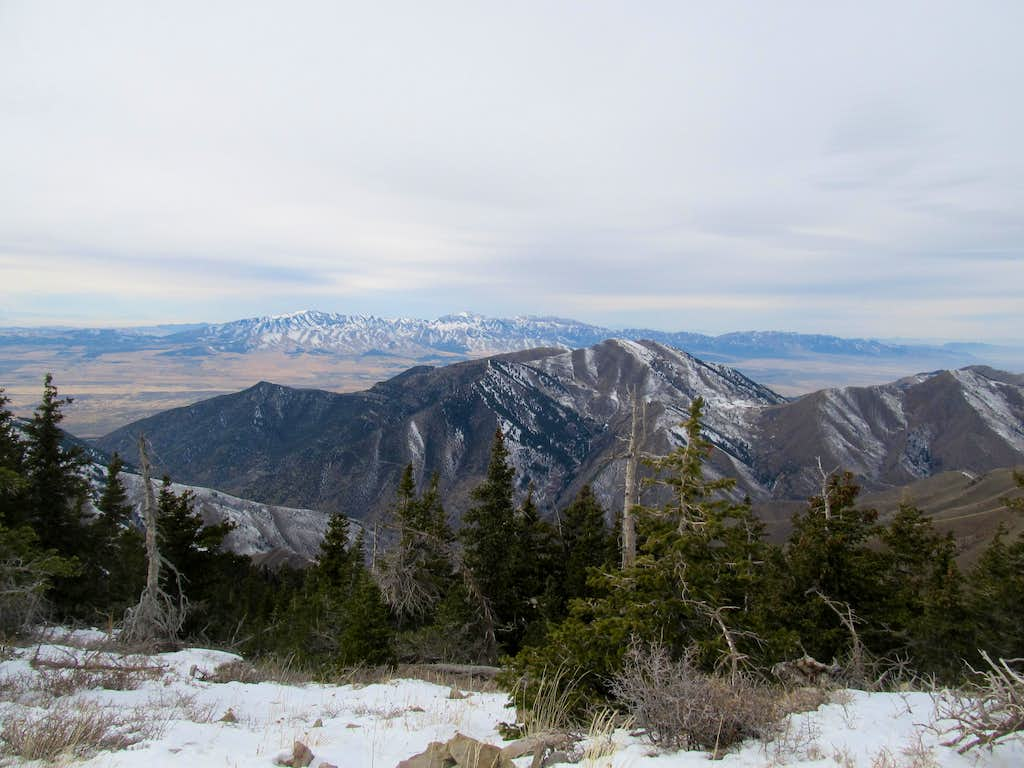 Stansbury's, Baldy from Summit