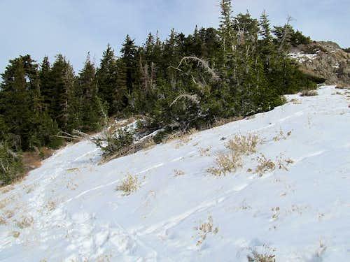 Snow along W Ridge
