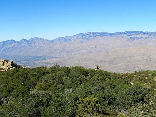 Santa Catalina Mountains from the summit of Tanque Verde Peak
