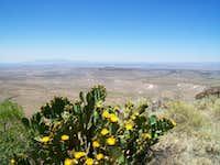 Southern Sierra De Las Uvas Mountains
