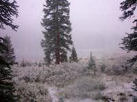 Dollar Lake campground...