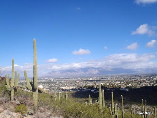 Tucson urban views