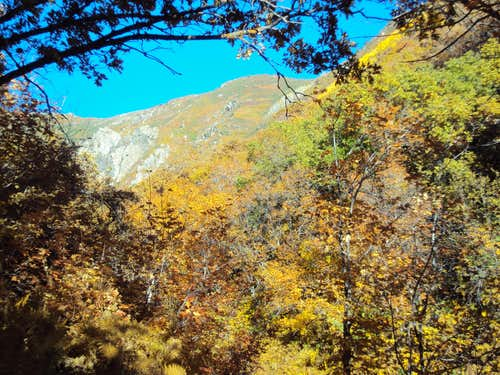 Bues Trail In Fall