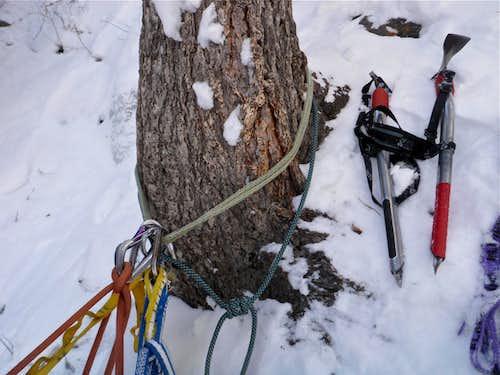 Tree anchor