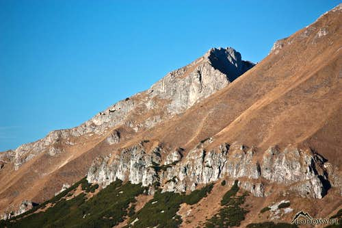 Novy vrch