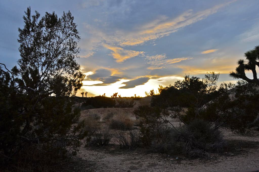 Another sunset at Joshua Tree