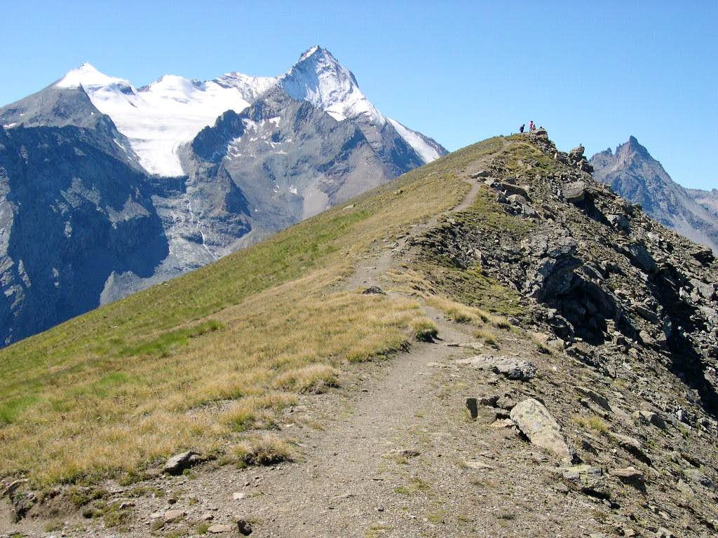 Punta Tsa Sèche  (2824 m) and Grivola subgroup