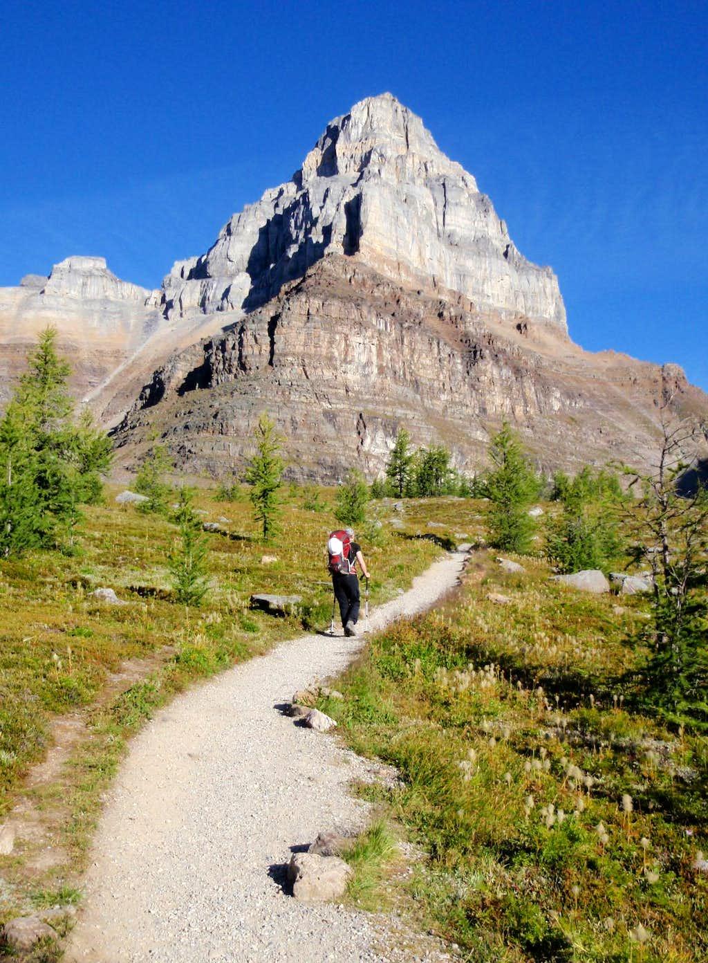 pinnacle mountain how tall