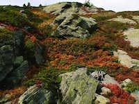 Colori d'autunno Vallone di...