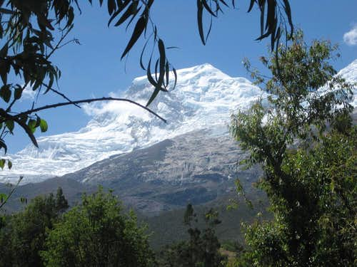 Huascaran Norte from the woodlands near Musho