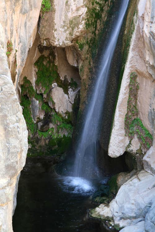 Darwin Falls (Death Valley)