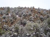 Snow, Pines & Granite
