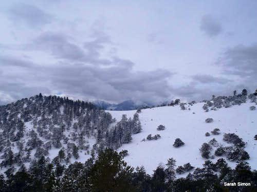 Southern arm of Bald Mountain