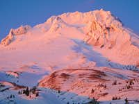 Mount Hood - Pretty In Pink