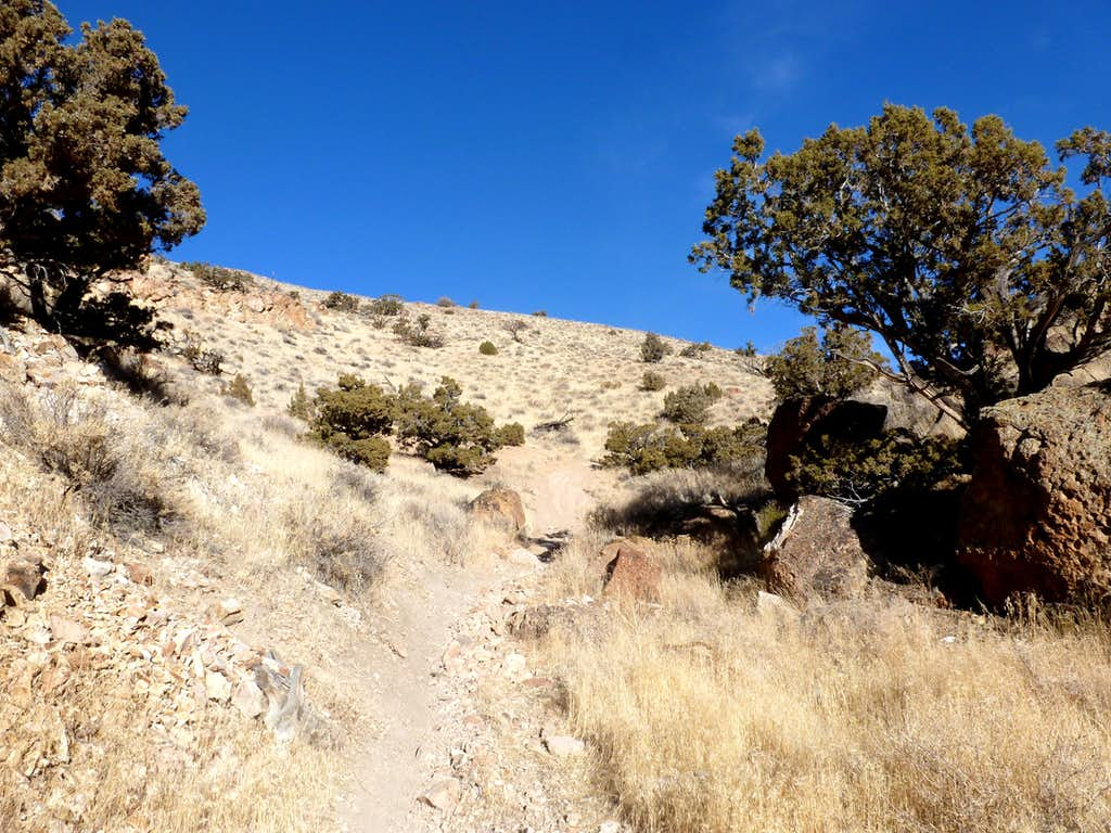 View up the trail through the canyon