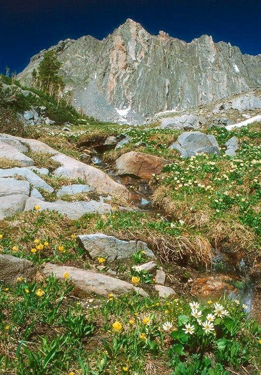 West face of Mount Zirkel