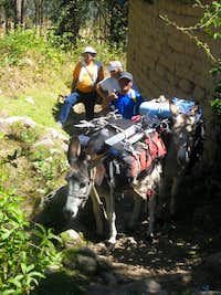 Our mules near Musho