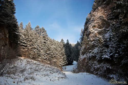 In Szopczanski gorge
