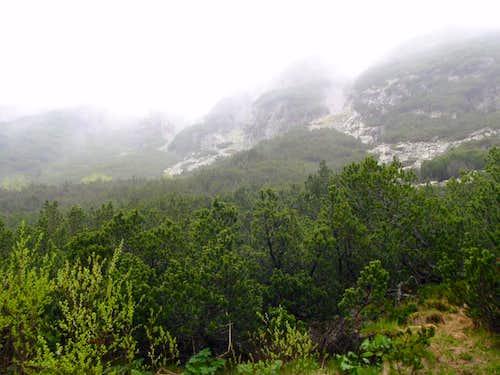 Fog in Rila Mountains