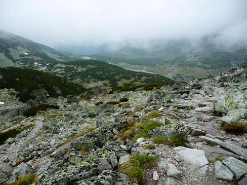 View down the trail on Musala
