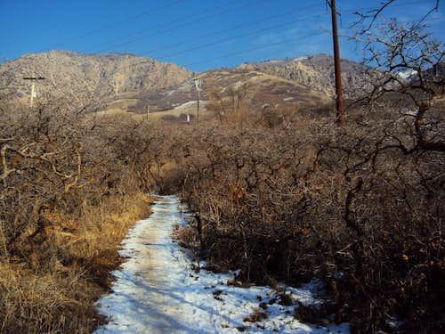 Trail near 36th Street TH
