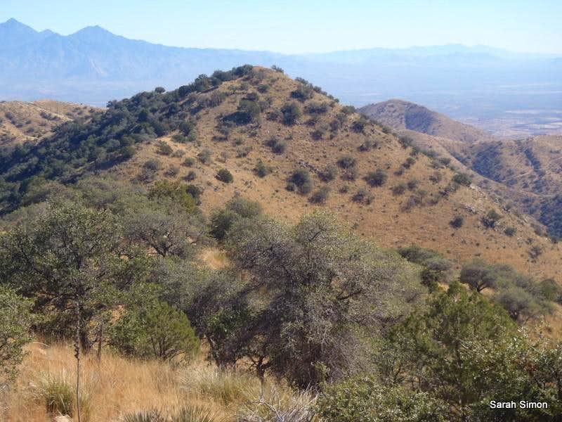 Placer Peak
