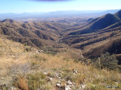 South down Ox Frame Canyon