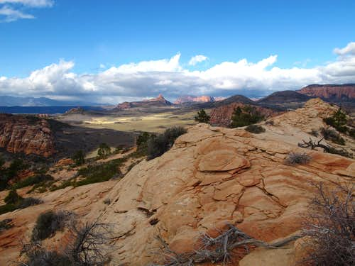 Looking toward Kolob Canyons