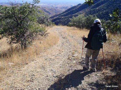 UN 6180 path down