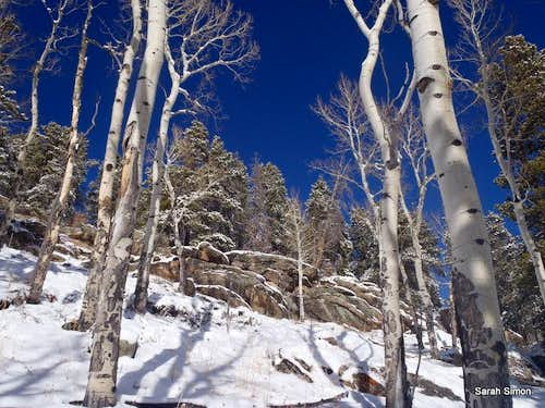 Rock outcrops and aspens