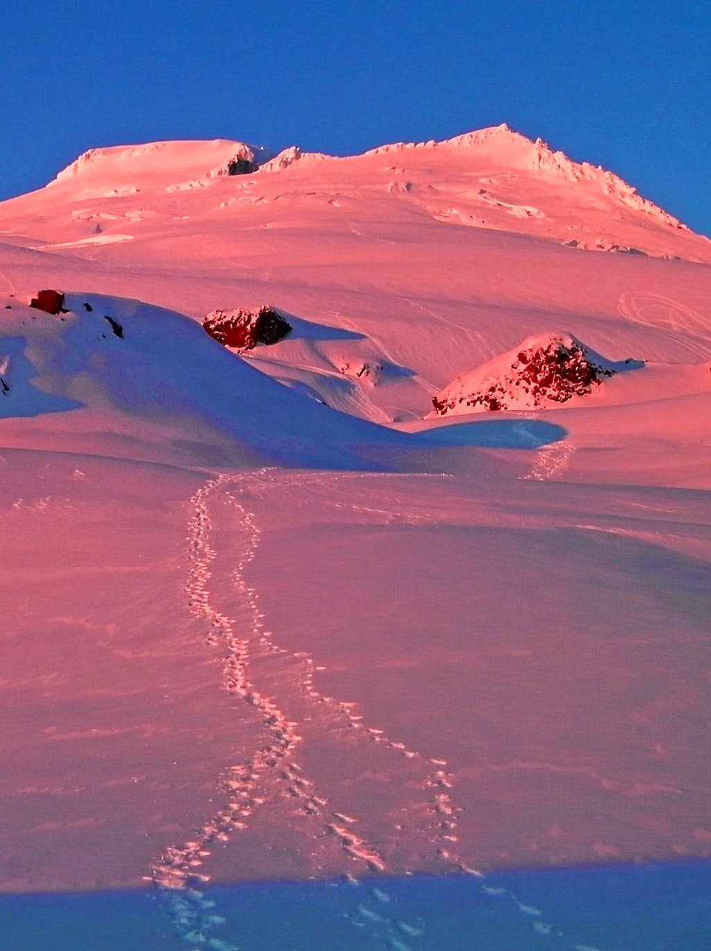 Pink Alpenglow on Mount Baker