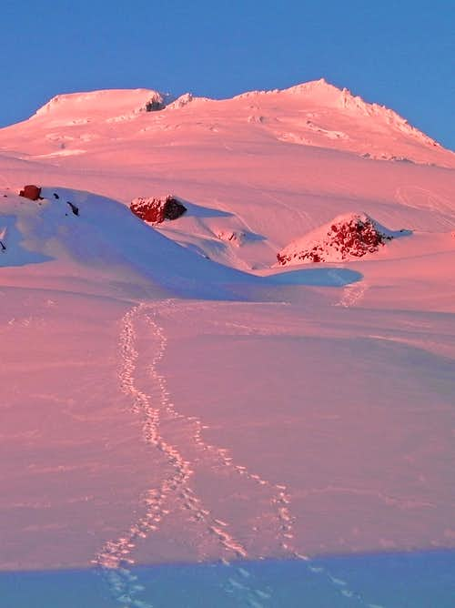 Pink Alpenglow on Mount Baker