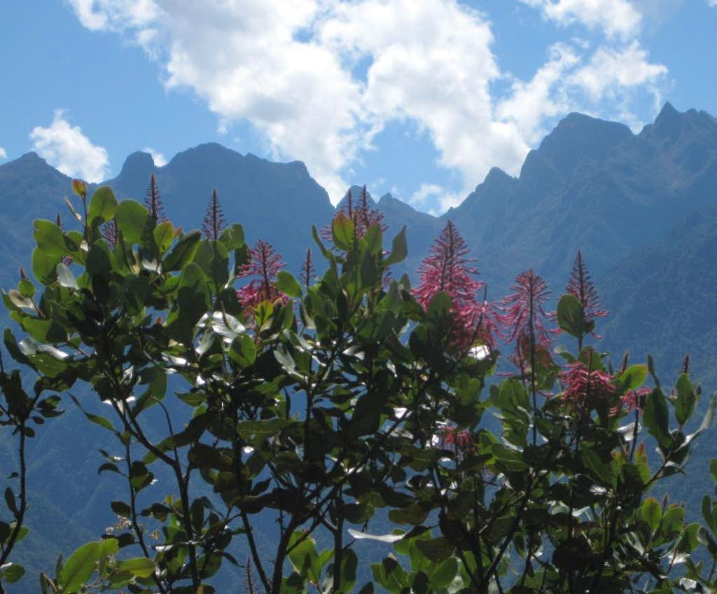 The Cordillera Urubamba from Cerro Machu Picchu