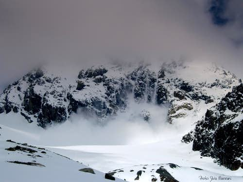 An avalanche from Gran Zebrù South face