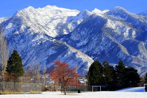 Bells Canyon\'s Fresh New Winter Coat...Red, White and Blue