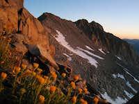 Dawn on Simmons Peak