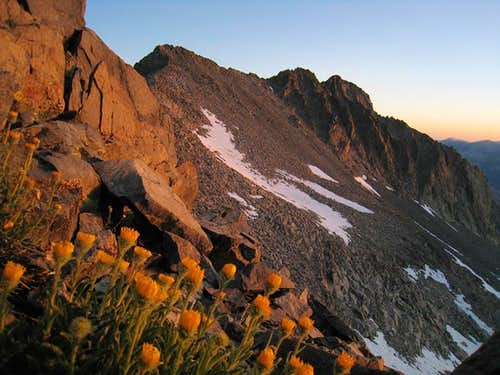 Dawn on Simmons Peak